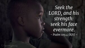 Seek and You shall find