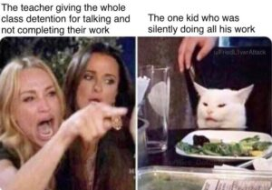 Woman Pointing at Cat – Funny Memes Compilation