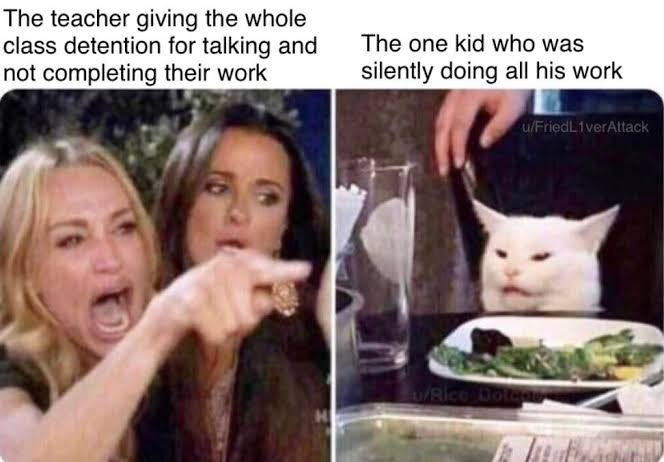 Read more about the article Woman Pointing at Cat – Funny Memes Compilation