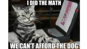Unkleaboki Funny Cat Videos, Funny Cat Memes.