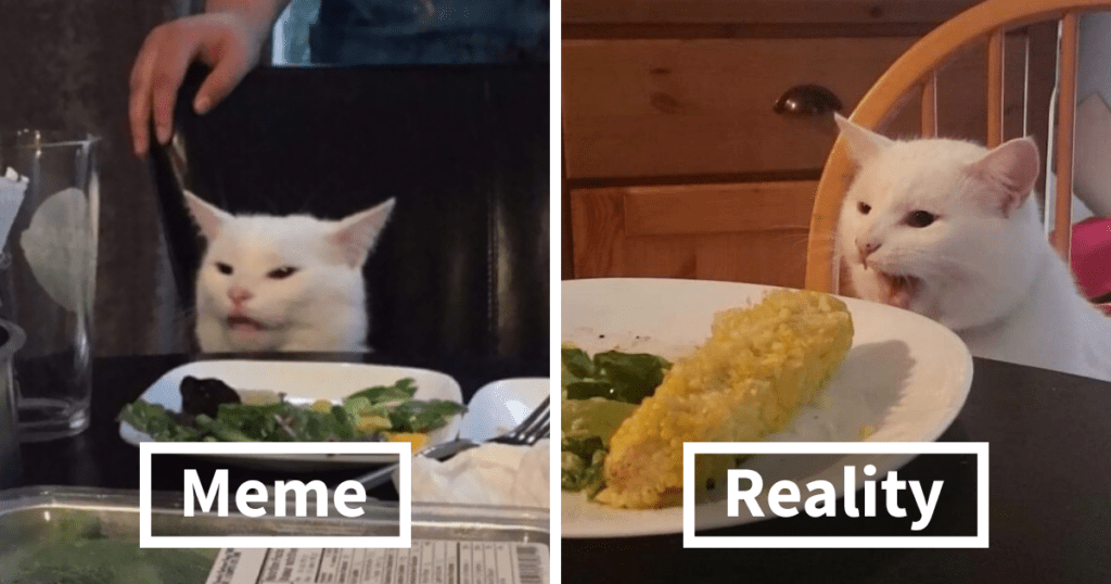 woman yelling at cat meme smudge lord fb15