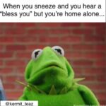 Kermit the Frog: Funny Memes