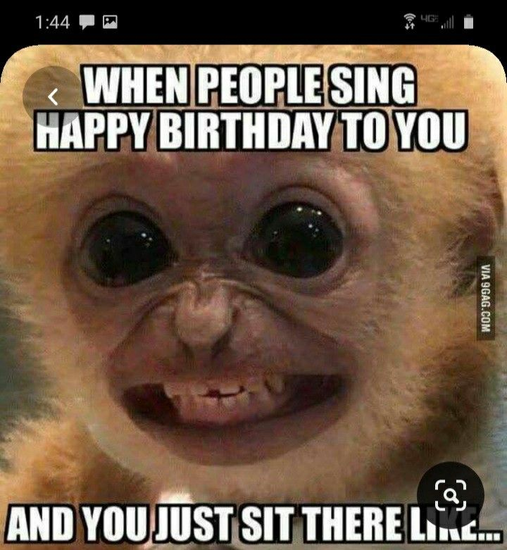 You are currently viewing Funny Birthday Memes, 12 Funny Memes