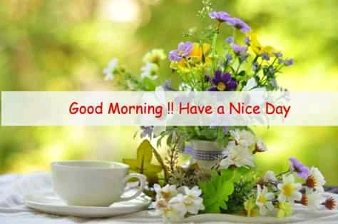 Read more about the article Good Morning Quotes for Her, Good Morning Thoughts for Him (25 Wednesday Motivation Quotes, Love Words and Today in History)