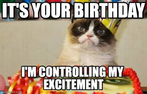 Funny Birthday Memes for Him [25 Funny Happy Birthday Quotes]  Purrfectly Funny Cat memes 2020, Amazing Cat Pictures -catstagram, funny cat memes we can relate with, Caturday, cat memes that are actually funny