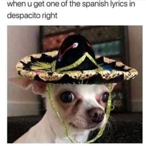 Funny Inappropriate Memes, dank memes, funny memes in Spanish, funny Diwali Memes and funny Anime memes (45 funny pictures)