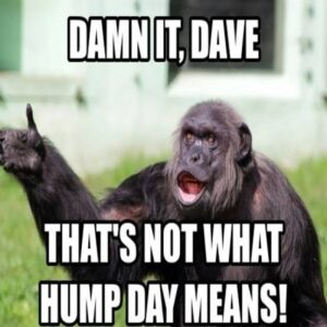 Funny Hump Day Memes (19 Wednesday Funny Memes)