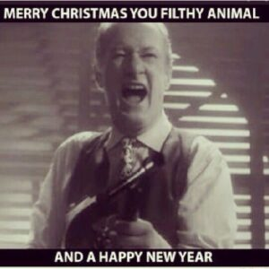 Merry Christmas You filthy Animal (12 Christmas funny memes and videos)