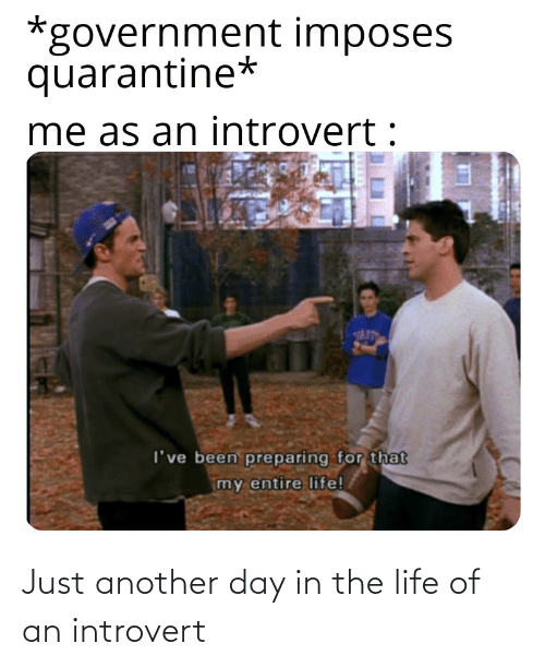 just another day in the life of an introvert 71220565
