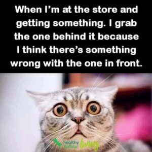 45 Purrfect Funny Cat Pictures (Funny Cat Memes 2021)