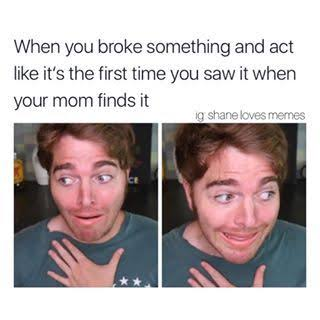 Read more about the article funny memes 2021, funny memes, funny birthday memes, funny cat memes, funny pictures