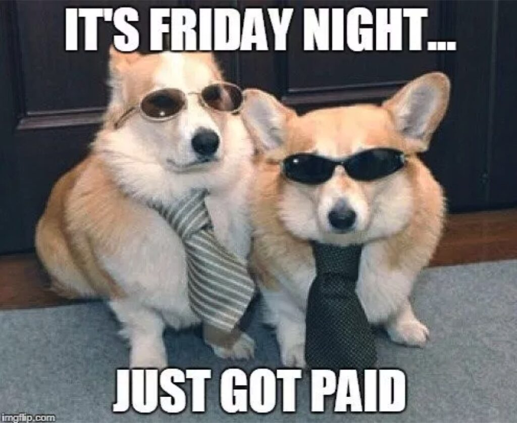 just got paid dogs friday memes