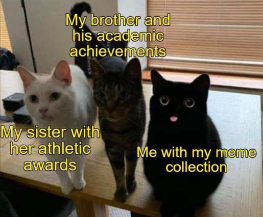 sister athletic awards brother academic me meme collection cats