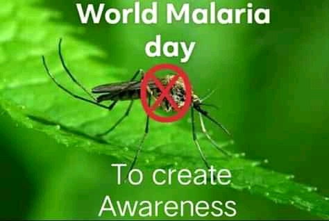 Read more about the article Happy World Malaria Day (55 funny Mosquito memes)