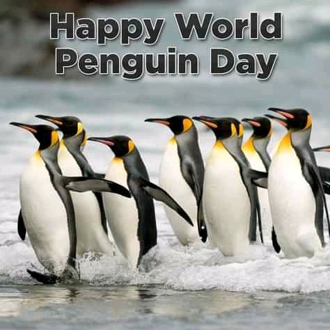 Happy World Penguin Day 2021 (20+ Funny Penguin Memes)