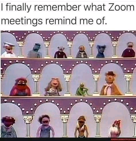 Read more about the article 17 funny zoom memes