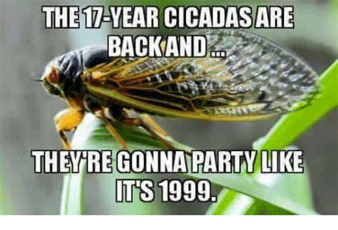 funny texas heat memes, fathers day memes funny, heat memes funny, funny cicada memes, motorcycle memes funny.